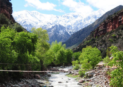Excursion from Marrakech to Ourika Valley (1 day)